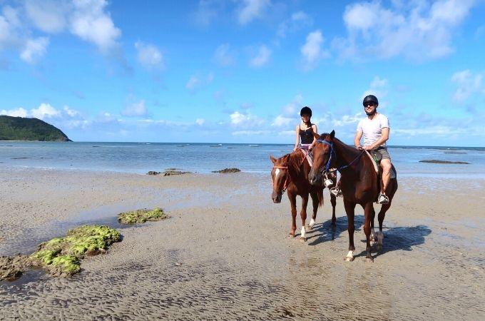 Cape Tribulation Horse Riding Tour